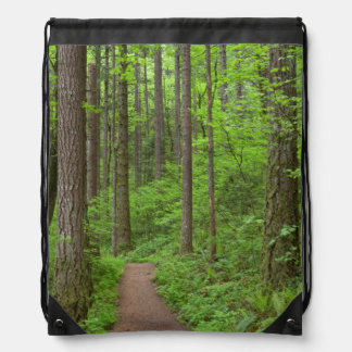 USA, Oregon, Columbia River Gorge. Elowah Falls Cinch Bags