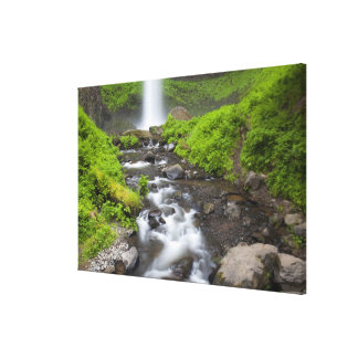 USA, Oregon, Columbia River Gorge, Latourell Stretched Canvas Print