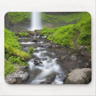 USA, Oregon, Columbia River Gorge, Latourell Mouse Pad