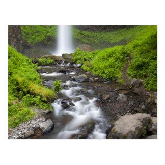 USA, Oregon, Columbia River Gorge, Latourell Postcard