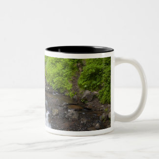USA, Oregon, Columbia River Gorge, Latourell Two-Tone Coffee Mug