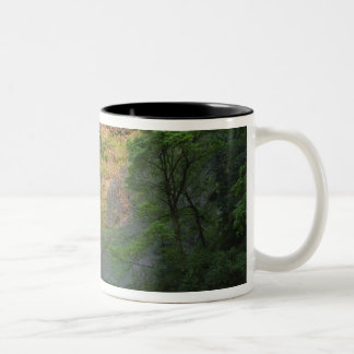 USA, Oregon, Columbia River Gorge, Multnomah Two-Tone Coffee Mug