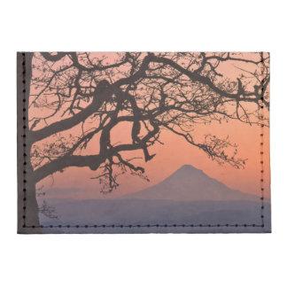 USA, Oregon, Columbia River Gorge National 2 Tyvek® Card Case Wallet