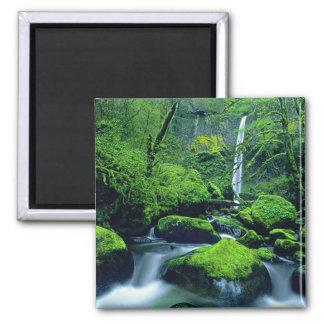 USA Oregon Columbia River Gorge National 2 Refrigerator Magnet