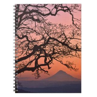 USA, Oregon, Columbia River Gorge National 2 Notebook