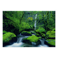 USA, Oregon, Columbia River Gorge National 2 Poster
