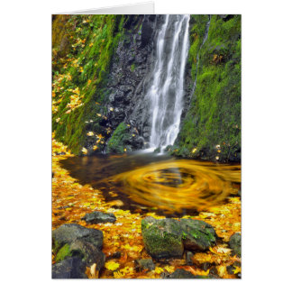 USA, Oregon, Columbia River Gorge National Card