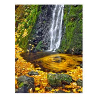 USA, Oregon, Columbia River Gorge National Postcard