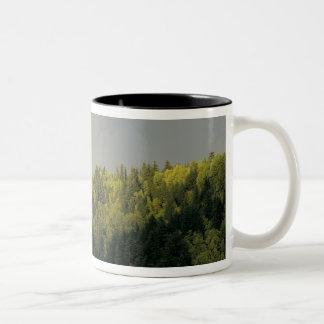 USA, Oregon, Columbia River Gorge National Two-Tone Coffee Mug