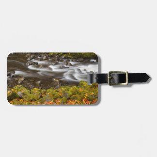 USA, Oregon, Columbia River Gorge, Tanner Creek 2 Bag Tag