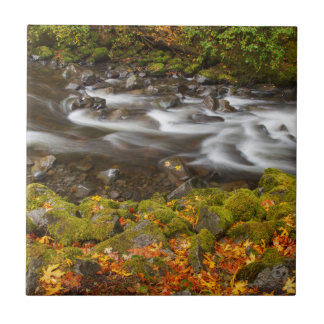 USA, Oregon, Columbia River Gorge, Tanner Creek 2 Ceramic Tile