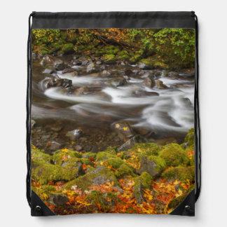 USA, Oregon, Columbia River Gorge, Tanner Creek 2 Cinch Bags