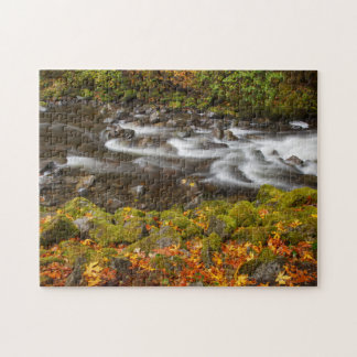 USA, Oregon, Columbia River Gorge, Tanner Creek 2 Jigsaw Puzzles