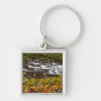 USA, Oregon, Columbia River Gorge, Tanner Creek 2 Keychain