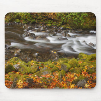 USA, Oregon, Columbia River Gorge, Tanner Creek 2 Mouse Pad