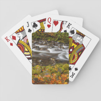 USA, Oregon, Columbia River Gorge, Tanner Creek 2 Playing Cards