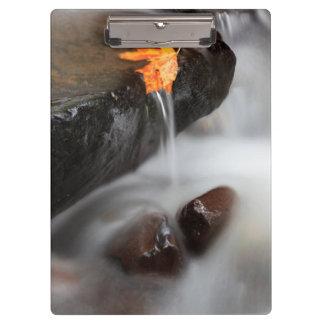 USA, Oregon, Columbia River Gorge, Tanner Creek 3 Clipboard