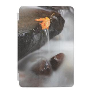 USA, Oregon, Columbia River Gorge, Tanner Creek 3 iPad Mini Cover