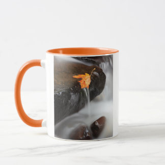 USA, Oregon, Columbia River Gorge, Tanner Creek 3 Mug