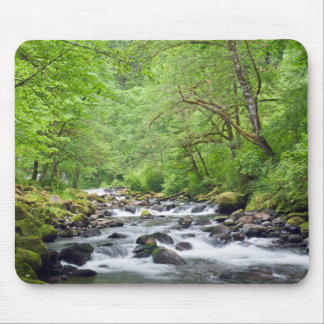 USA, Oregon, Columbia River Gorge, Tanner Creek 4 Mouse Pad