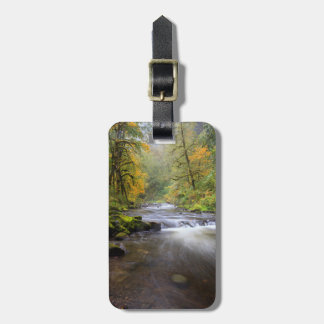 USA, Oregon, Columbia River Gorge, Tanner Creek Bag Tag