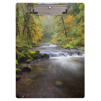 USA, Oregon, Columbia River Gorge, Tanner Creek Clipboard