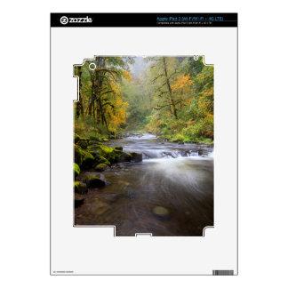 USA, Oregon, Columbia River Gorge, Tanner Creek Decal For iPad 3