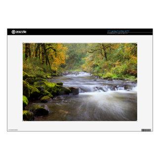 USA, Oregon, Columbia River Gorge, Tanner Creek Laptop Decals