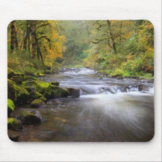 USA, Oregon, Columbia River Gorge, Tanner Creek Mouse Pad
