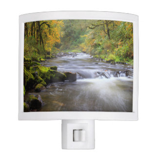 USA, Oregon, Columbia River Gorge, Tanner Creek Night Light