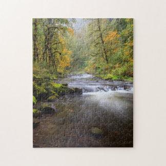 USA, Oregon, Columbia River Gorge, Tanner Creek Puzzles