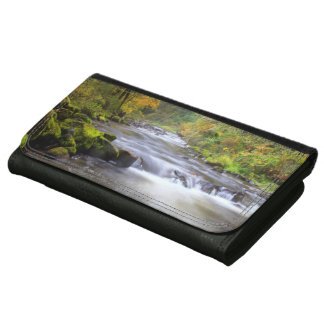 USA, Oregon, Columbia River Gorge, Tanner Creek Wallet