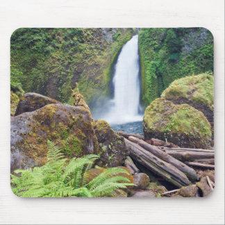 USA, Oregon, Columbia River Gorge, Wahclella Mouse Pad