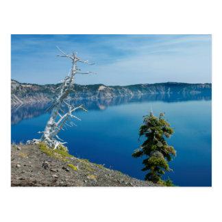 USA, Oregon, Crater Lake National Park 4 Postcard
