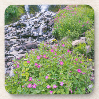 USA, Oregon, Crater Lake National Park Drink Coaster