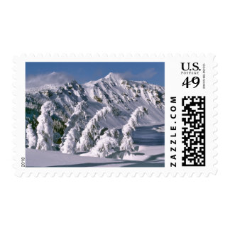USA, Oregon, Crater Lake NP. Trees bow under the Postage Stamp