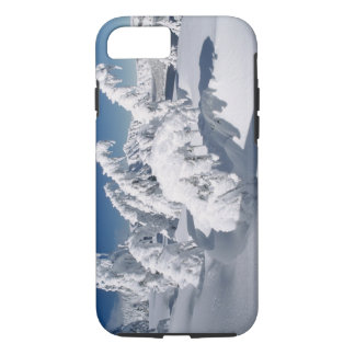 USA, Oregon, Crater Lake NP. Trees droop under a iPhone 8/7 Case
