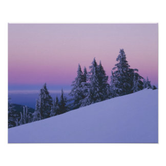 USA Oregon Deschutes National Forest Dusk Poster