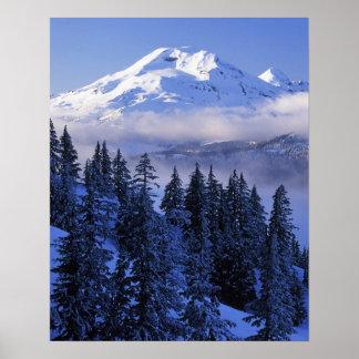 USA, Oregon, Deschutes National Forest, South Poster