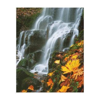 USA, Oregon, Fairy Falls, Columbia River Gorge Canvas Print