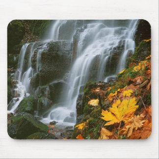 USA, Oregon, Fairy Falls, Columbia River Gorge Mouse Pad