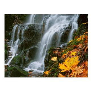 USA, Oregon, Fairy Falls, Columbia River Gorge Postcard