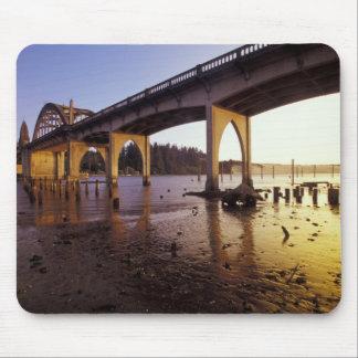 USA, Oregon, Florence. Siuslaw Bridge and Mouse Pad