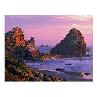 USA, Oregon, Harris State Beach, Brookings. 2 Postcard