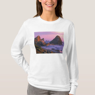 USA, Oregon, Harris State Beach, Brookings. 2 T-Shirt