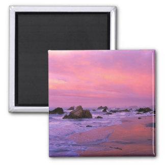 USA, Oregon, Harris State Beach, Brookings. Magnet
