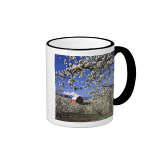 USA, Oregon, Hood River Valley, Pear orchard Ringer Coffee Mug