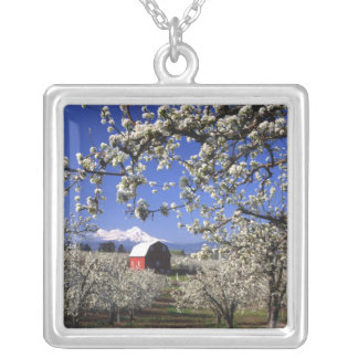 USA, Oregon, Hood River Valley, Pear orchard Pendant
