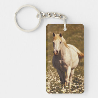 USA, Oregon. Horse in a field of daisies Keychain