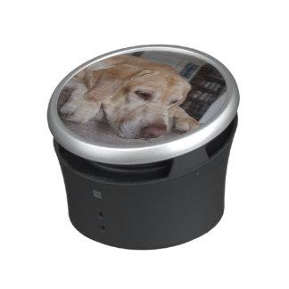 USA, Oregon, Keizer, Labrador Retriever Resting Bluetooth Speaker